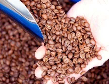 Bell Lane Coffee Beans