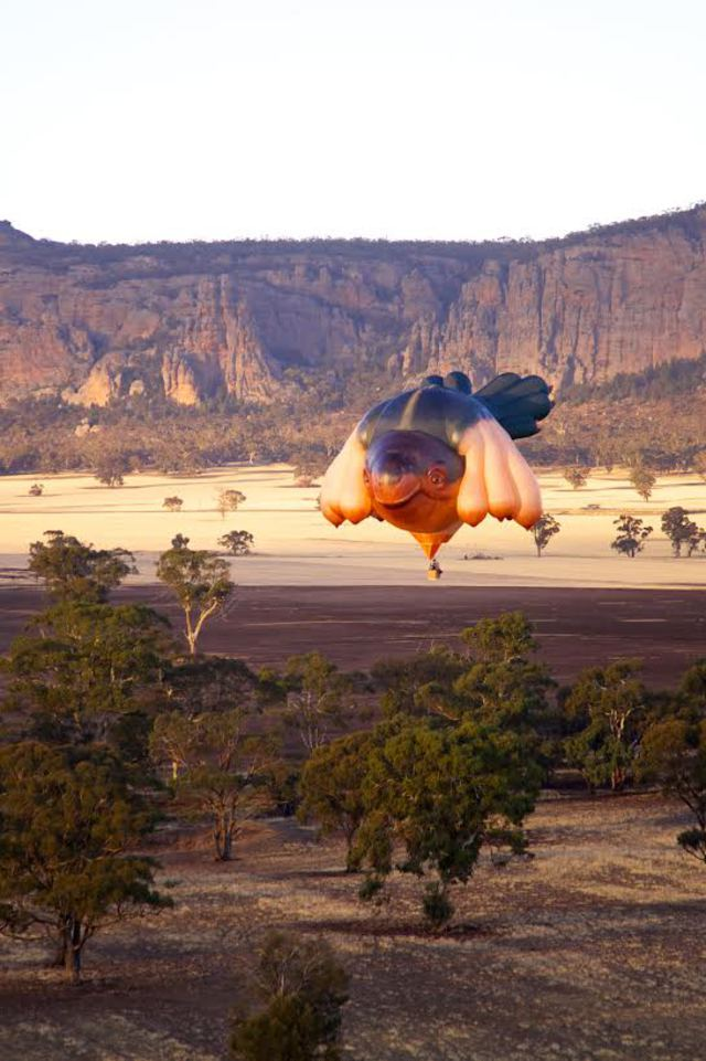 First flight of the SkyWhale, over Mt Arapilies, Western Victoria, Australia  Image courtesy ACT Government / Centenary of Canberra.