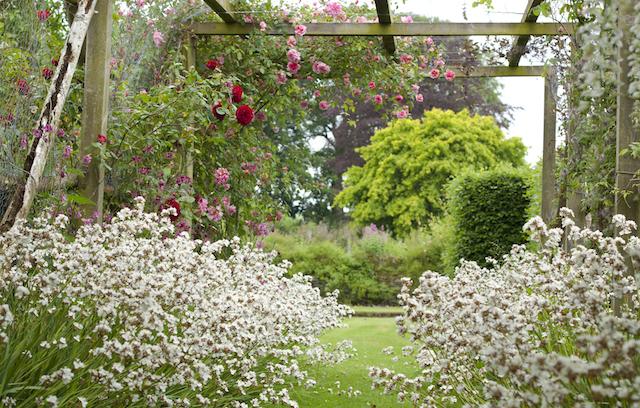Burtown House & Gardens, Athy, Co, Kildare