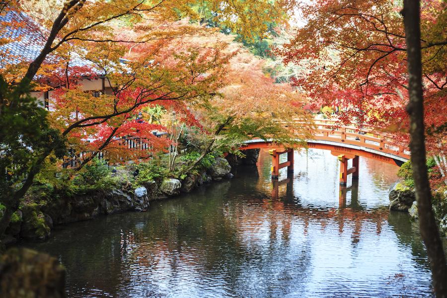 A rust-coloured Japanese garden
