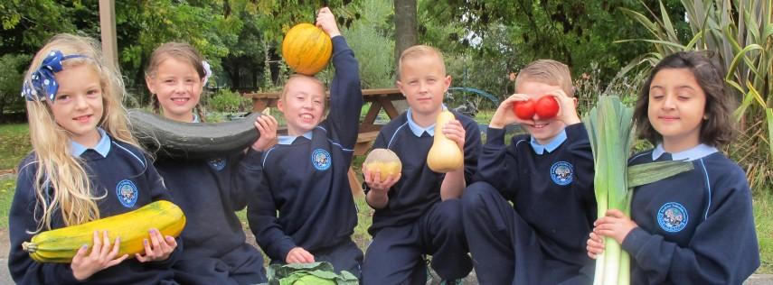 healthy-food-for-all-school-food-initiative-855x316