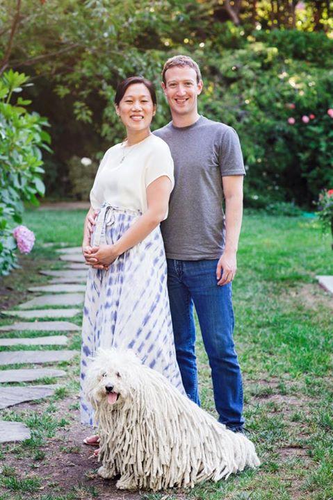 Mark-Z-Facebook