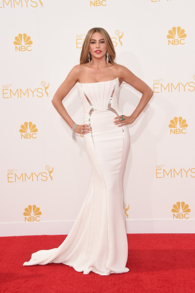 LOS ANGELES, CA - AUGUST 25: Actress Sofia Vergara attends the 66th Annual Primetime Emmy Awards held at Nokia Theatre L.A. Live on August 25, 2014 in Los Angeles, California.