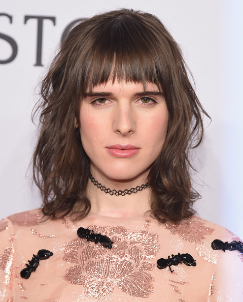 NEW YORK, NY - FEBRUARY 10: Actor Hari Nef attends 2016 amfAR New York Gala at Cipriani Wall Street on February 10, 2016 in New York City. (Photo by Michael Loccisano/Getty Images)