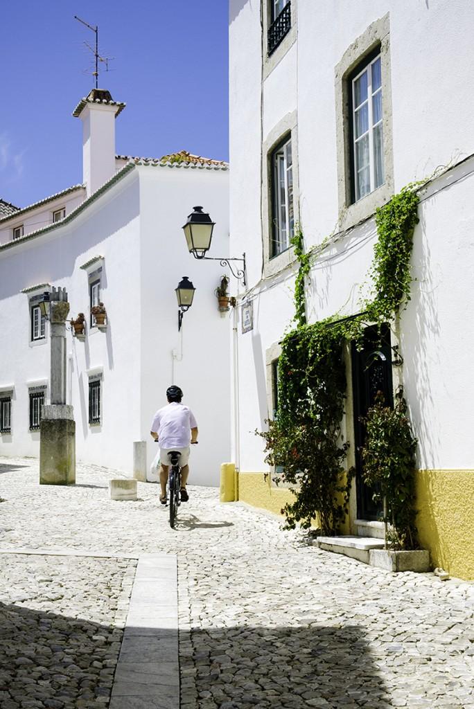 bike_houses copy