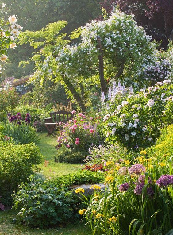 English Wildflower Garden