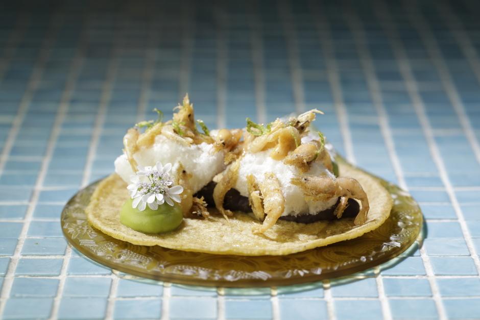 hoja-santa-barbate-shrimp-taco