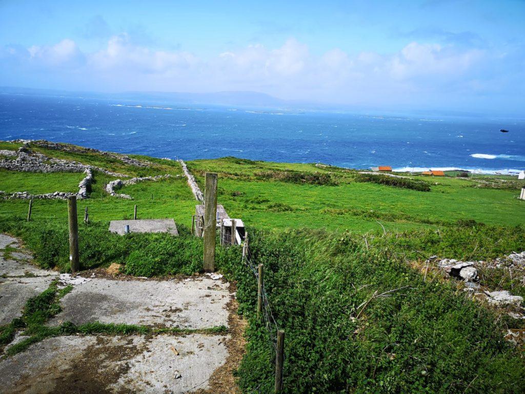 Cape Clear views