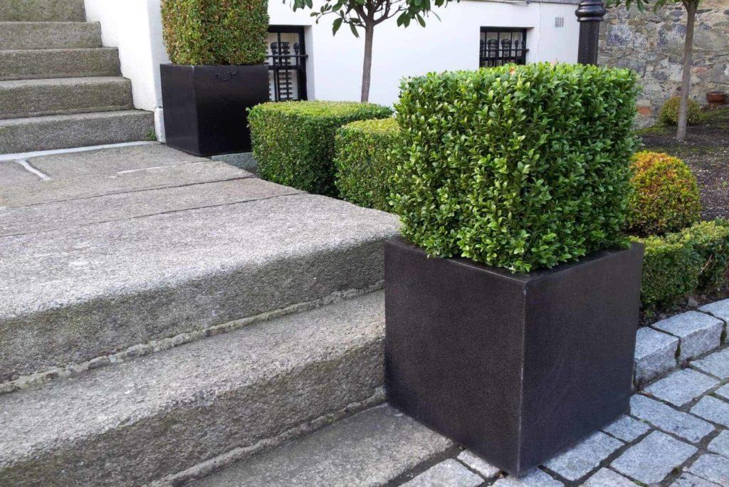 garden buys under €50