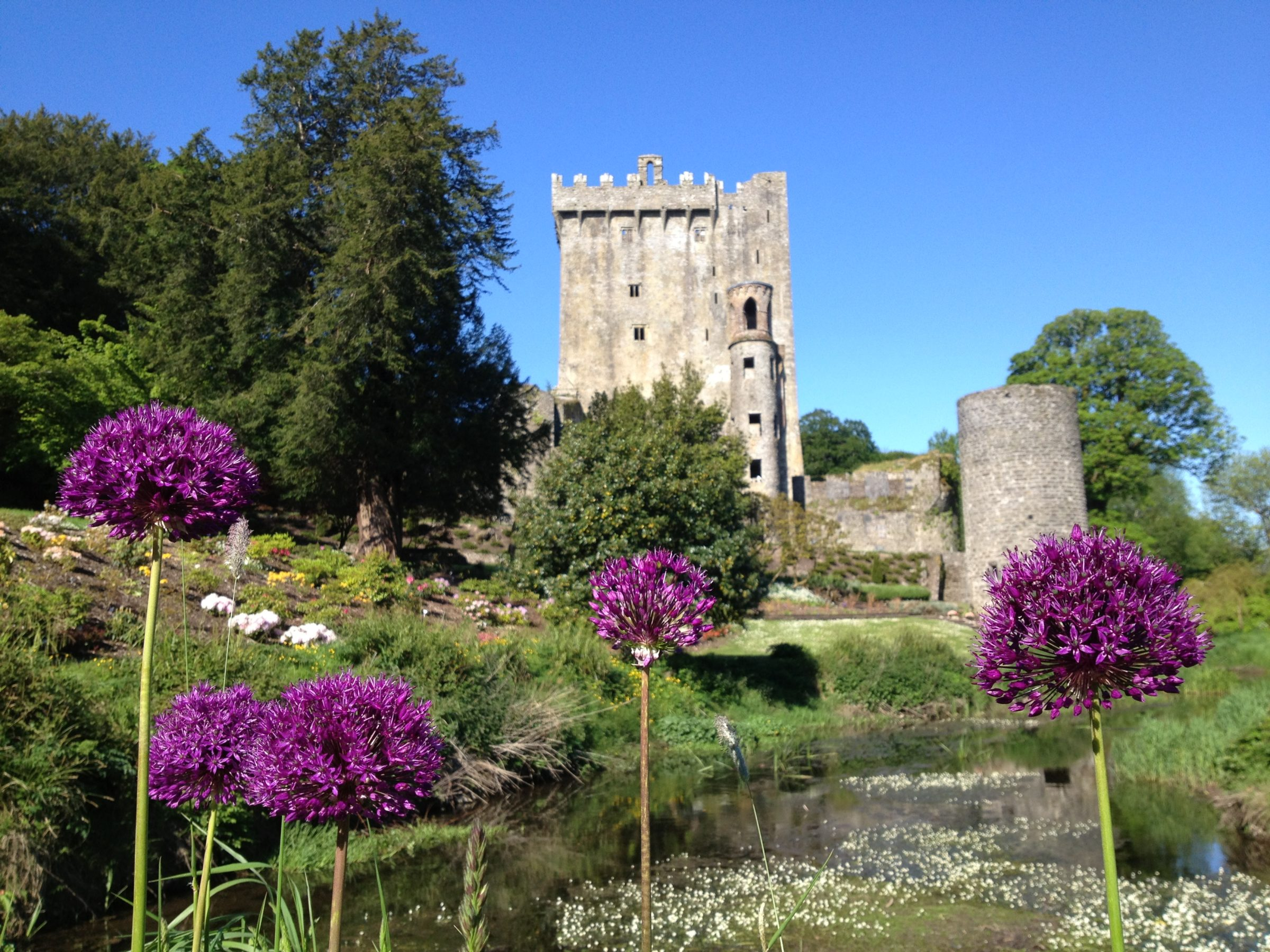 Blarney Castle Irish Gardens gardens to visit