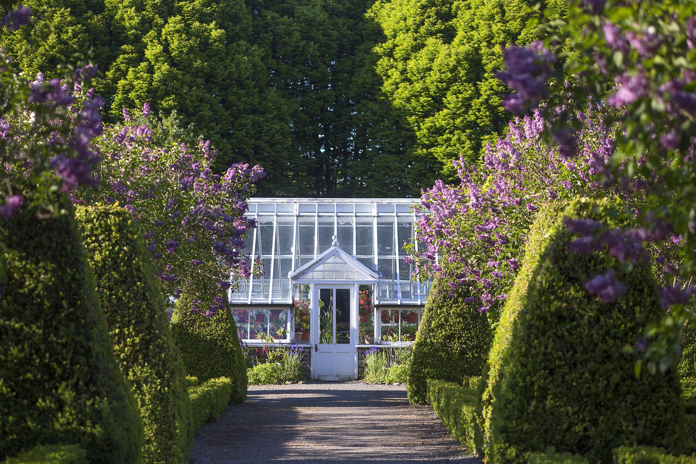Tina Claffey Birr Castle Gardens to Visit