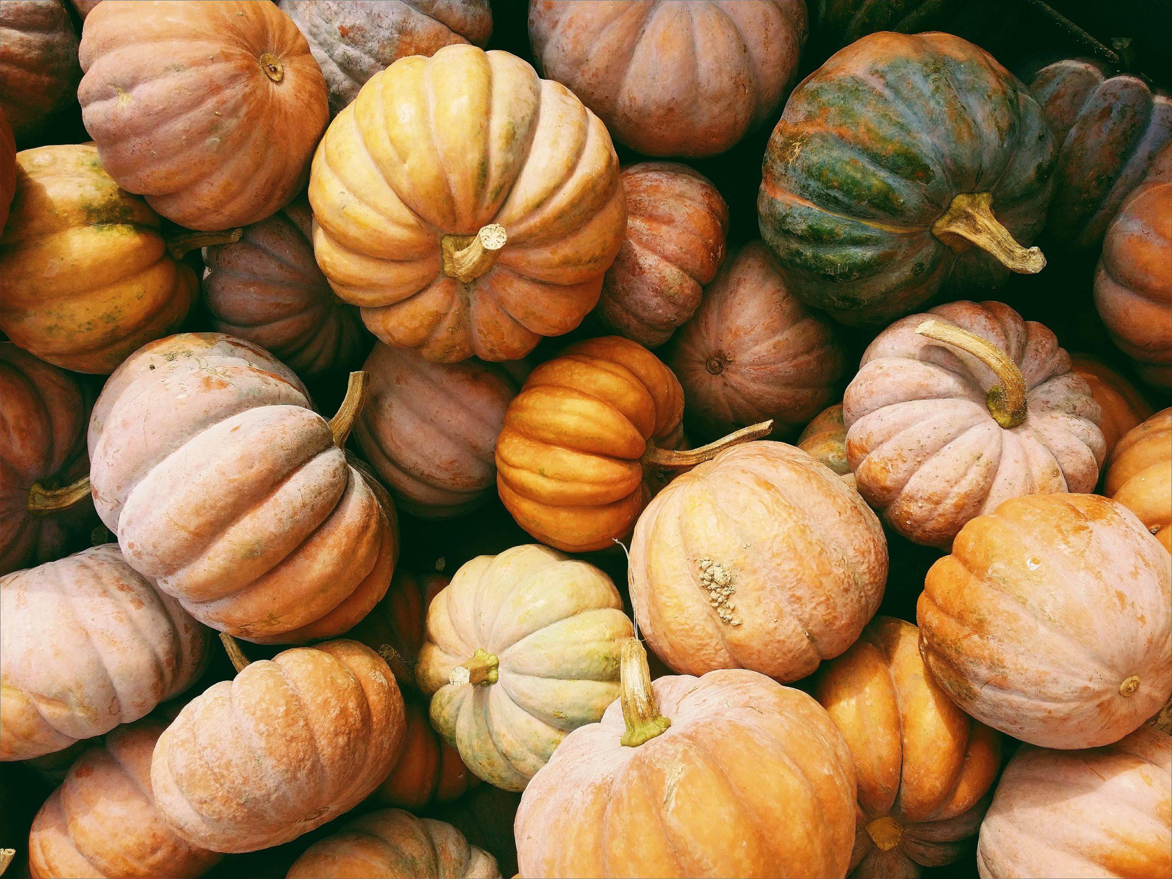sustainable Halloween decorations