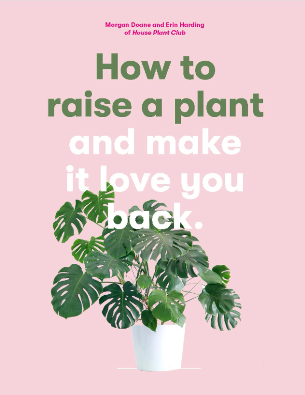 gifts for houseplant parents