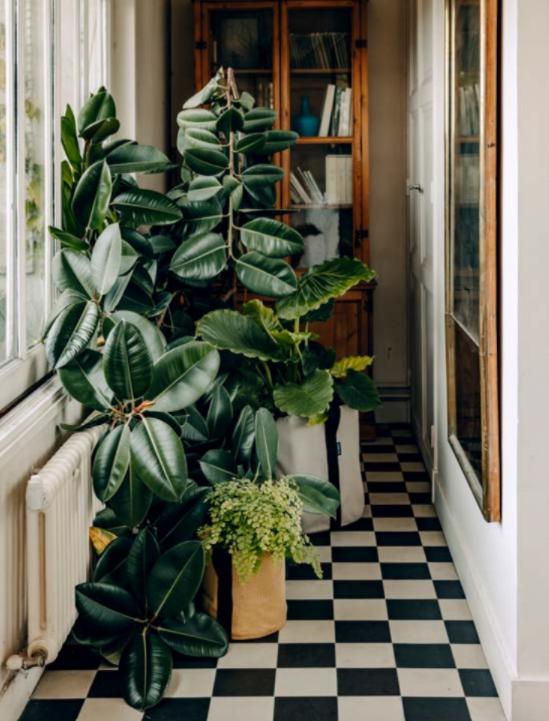 mood boosting interiors buys